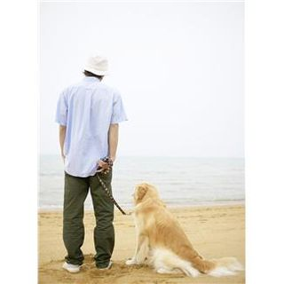 Man with dog at beach