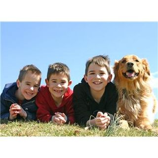 3 boys and a dog
